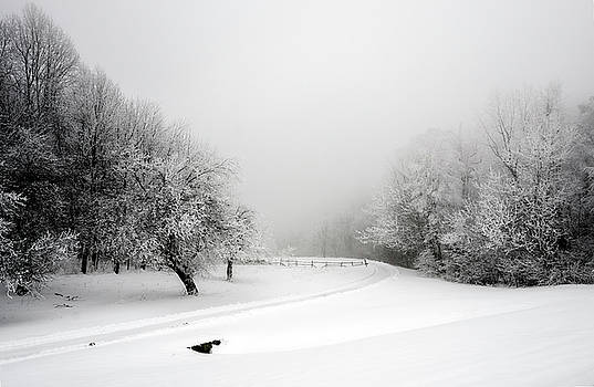 Snow Bound by Greg Reed