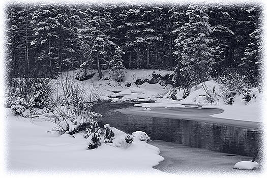 Snow by the riverside black and white by Bianca Collins