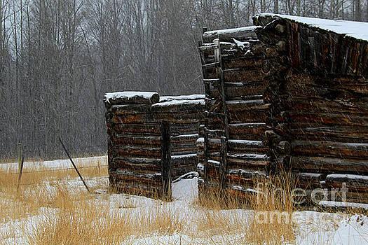 Roland Stanke - Snow cabin