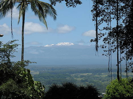 Snow-capped Mauna Kea by Ron Holiday Broomell