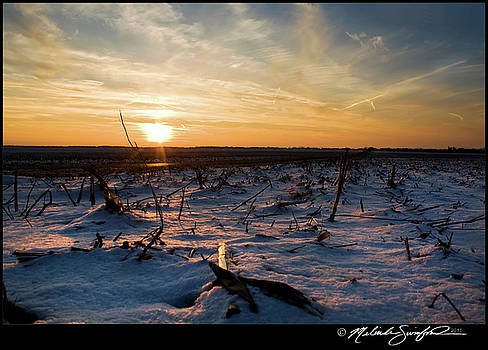 Snow Covered Fields at Dusk by Melinda Swinford