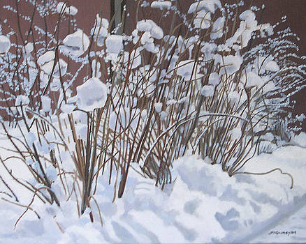 Snow Covered by Joan McGivney