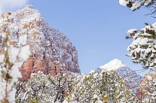 Snow Covered by Laura Pratt
