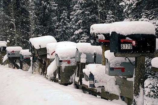 Matt Swinden - Snow Covered Mailboxes