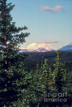 Bob Phillips - Snow Covered Mt. McKinley