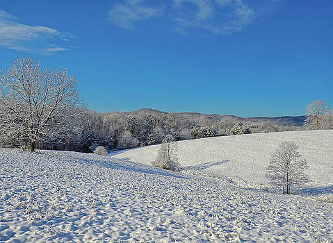 Snow Covered Pasture by Susan Leggett