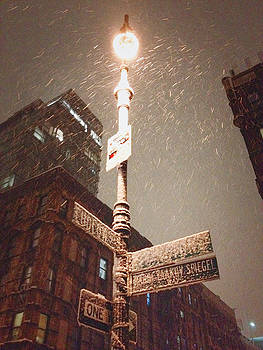 Snow Covered Signs - New York City by Vivienne Gucwa
