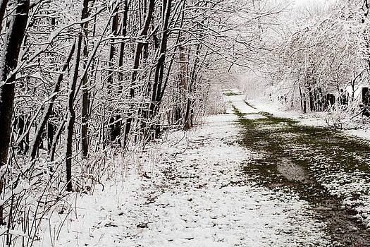 Snow Covered Trail by Amanda Kiplinger