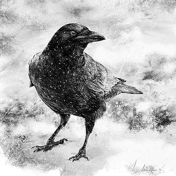 To Know A Crow by Laurie Musser