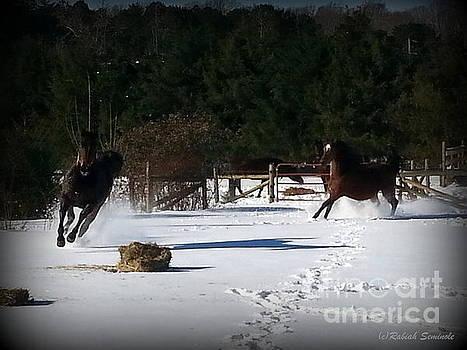 Snow Dancing by Rabiah Seminole