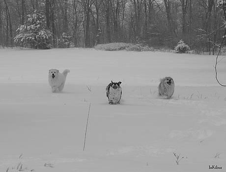 Alana  Schmitt - Snow Day