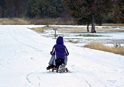 Snow Day by Shawna Nickel