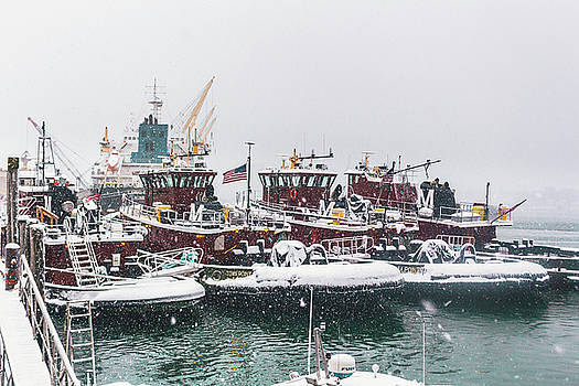 Snow Day Tugs by Devin LaBrie