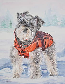 Snow Dog by Gail Dolphin