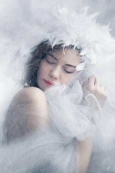 Snow Dream by Diana Kondra