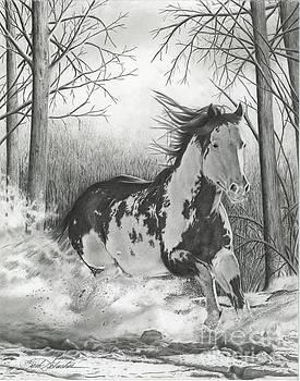 Snow Driftin' by Barb Schacher