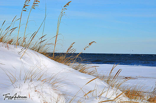 Snow Dunes by Tazz Anderson