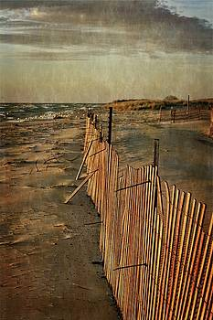 Snow Fence and Lake Michigan by Michelle Calkins