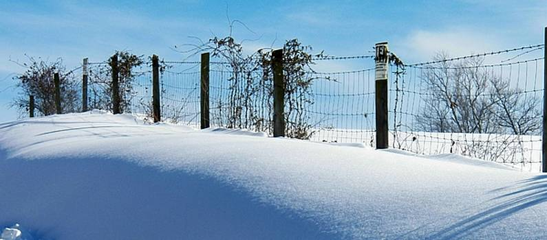 Snow Fence by Joyce Kimble Smith