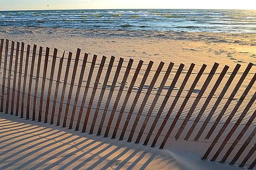 Snow Fence on Lake Michigan by Michelle Calkins