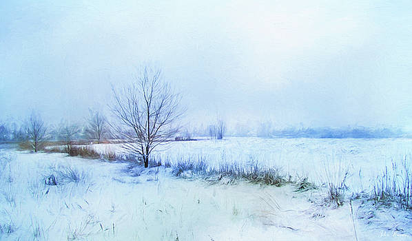 Snow Field by John Rivera