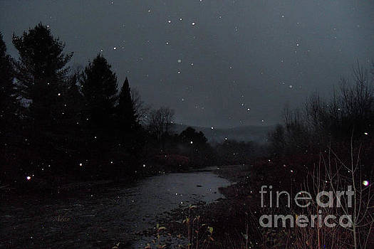 Felipe Adan Lerma - Snow Flakes by Little River Stowe Vermont