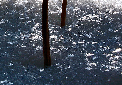 Snow Flakes by Scott Heister