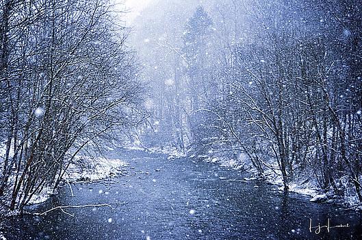 Snow Globe by Lj Lambert