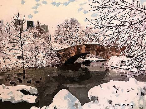 Snow in Central Park by Gary Springer