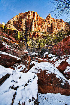 Christopher Holmes - Snow In The Canyons