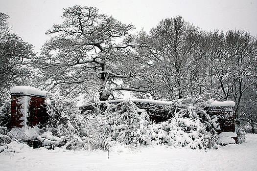 Snow Landscape 12 by Jason Moore