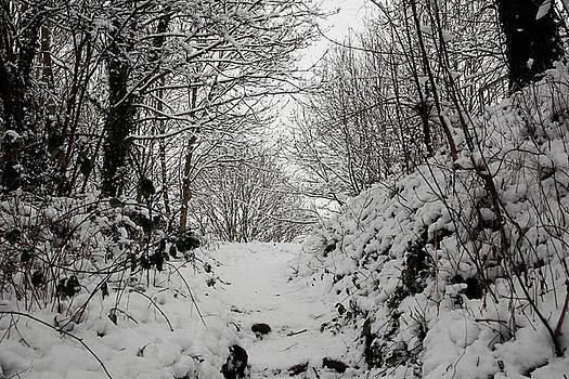 Snow Landscape 13 by Jason Moore