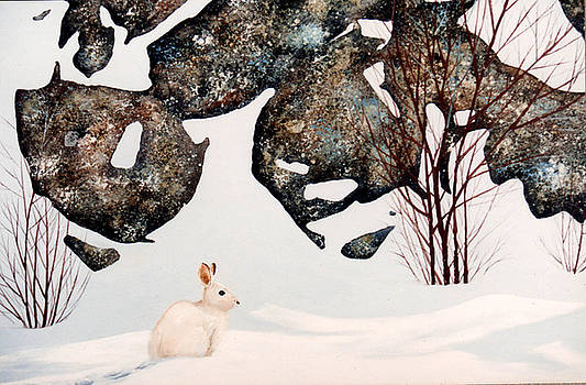 Frank Wilson - Snow Ledges Rabbit