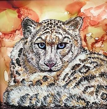 Snow Leopard by Andrea Patton