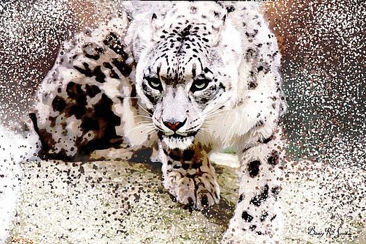 Snow Leopard by Barry Jones