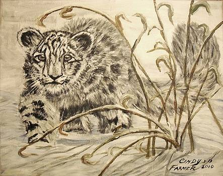 Snow Leopard by Cynthia Farmer