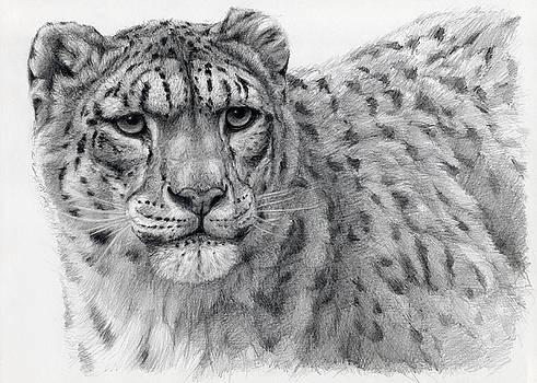 Snow Leopard Portrayal by Svetlana Ledneva-Schukina