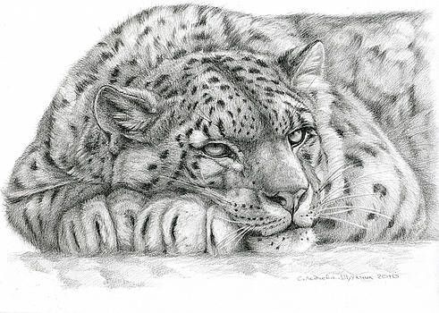 Snow Leopard by Svetlana Ledneva-Schukina