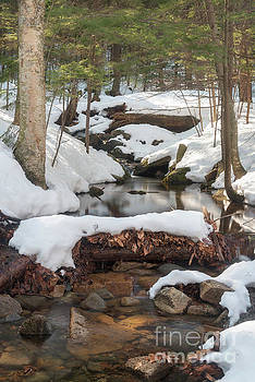 Snow Melt by Sharon Seaward