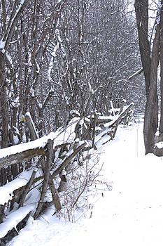 Valerie Kirkwood - Snow on a Cedar Fence