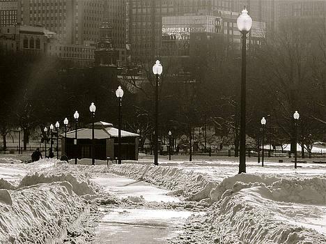 Snow on Boston Common by Natalia Radziejewska
