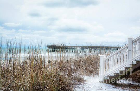 Snow On The Beach 8 by Kathy Baccari