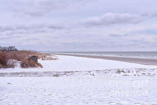Snow On The Beach I by Kathy Baccari