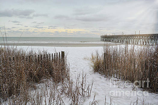 Snow On The Beach 7 by Kathy Baccari