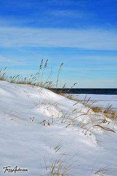 Snow on the Dunes by Tazz Anderson