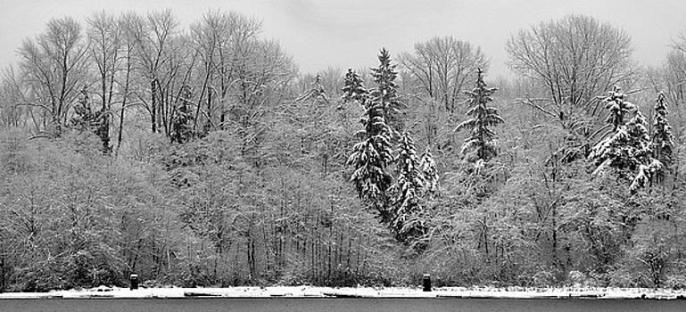 Bill Kellett - Snow on the River Bank