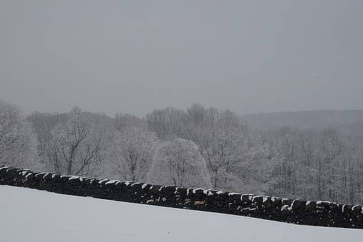 Snow over the Wall by Michael Senn