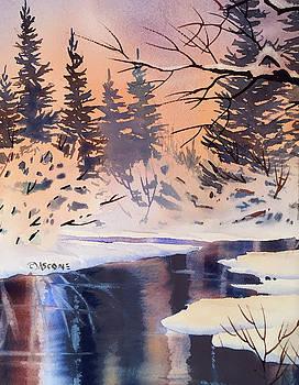 Snow Patterns by Teresa Ascone