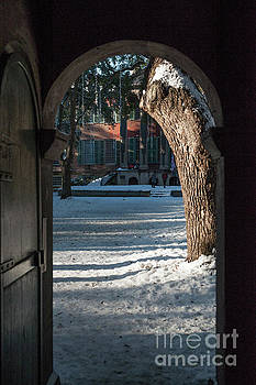 Snow Peek of College of Charleston  by Dale Powell