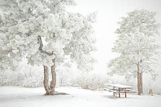 Snow Picnic by Kristal Kraft